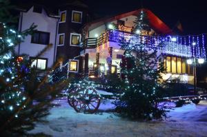 Portile Ocnei, Guest houses  Tîrgu Ocna - big - 54