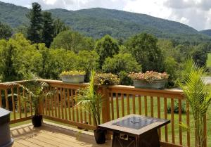 obrázek - East Asheville Hot Tub, Views, Fire Pit, Parkway