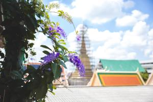 Feung Nakorn Balcony Rooms and Cafe, Hotels  Bangkok - big - 86