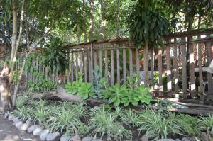 Colibri Eco-Lodge, Hostelek  Panajachel - big - 21
