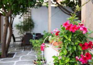 obrázek - Olga's Home