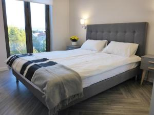 New Modern Apartment on Rakowicka