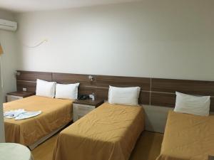 Elite Palace Hotel, Hotels  Prudentópolis - big - 15