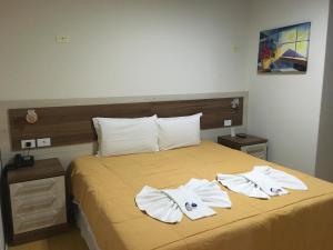 Elite Palace Hotel, Hotels  Prudentópolis - big - 30