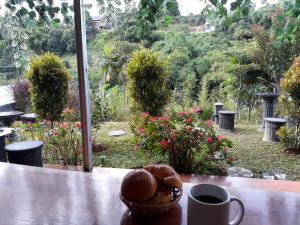 Cari Hotel Murah Bandung