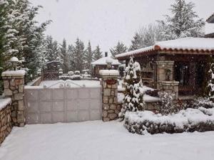 villa in Parnassos - Hotel - Arachova
