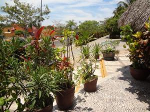 Hotel Puerta Del Mar Ixtapa, Apartmanhotelek  Ixtapa - big - 39