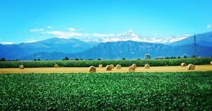 Agriturismo Il Riccio Verde - Brondello