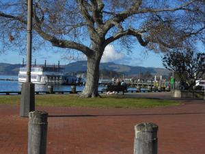 Lakeside City Apartments - Penthouse and Studio, Apartments  Rotorua - big - 61