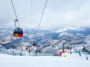 Pyeongchang Forest Hotel, Hotels  Pyeongchang  - big - 165