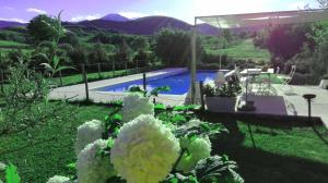 Hillside Villa with Swimming Pool and Jacuzzi - Frasassi Caves, Ville  Sassoferrato - big - 25