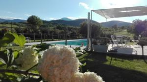 Hillside Villa with Swimming Pool and Jacuzzi - Frasassi Caves, Ville  Sassoferrato - big - 30
