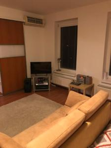 Spacious one-room apartment in a quiet environment