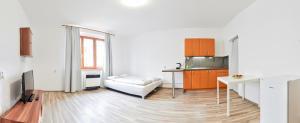Apartment Ukrajinska 12