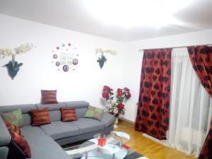 Ambiance Apartment - Swiss Village, Apartmány  Sibiu - big - 45