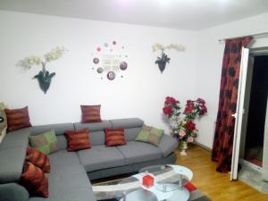 Ambiance Apartment - Swiss Village, Apartmány  Sibiu - big - 47