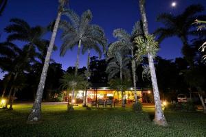 Lync Haven Rainforest Retreat - Daintree