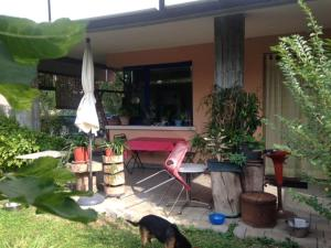 Joy in Verona - AbcAlberghi.com