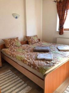 Apartement Suzana, Appartamenti  Mavrovo - big - 37