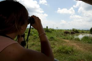 Mahoora Tented Safari Camp All-Inclusive - Udawalawe, Кемпинги  Удавалаве - big - 25