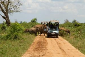 Mahoora Tented Safari Camp All-Inclusive - Udawalawe, Кемпинги  Удавалаве - big - 22