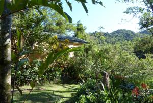Daintree Valley Haven - Cow Bay