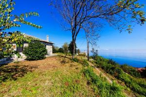 obrázek - Tranquil Cottage on Hill