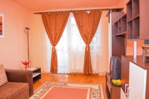 obrázek - Central Apartment Accommodation Baia Mare