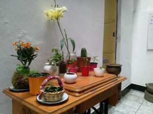 Hostal Campo Base Huaraz, Bed and Breakfasts  Huaraz - big - 25