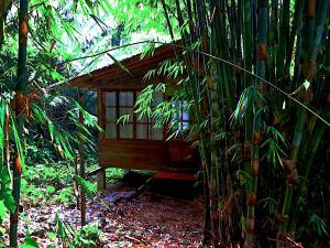 Huella Verde Rainforest Lodge, Chaty v prírode  Canelos - big - 5