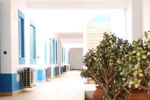 Oasis Beach Apartments, Aparthotels  Luz - big - 83