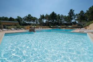 Location gîte, chambres d'hotes Camping Domaine des Pins dans le département Vendée 85