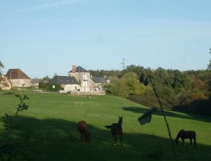 Location gîte, chambres d'hotes Domaine de Montgenoux dans le département Indre 36