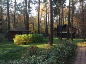 Дом в Сосновом бору, Пушкино