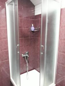 Apartement Suzana, Appartamenti  Mavrovo - big - 45