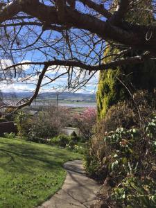 obrázek - Riverside Cottage Launceston