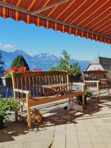 Hotel Sterne, Hotel  Beatenberg - big - 13