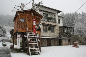Villa Filokosta - Hotel - Pertouli