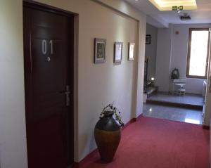 LUX Apartman B1 Milmari - Apartment - Kopaonik