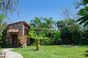 Tonantzincalli SPA Prehispanico, Ubytování v soukromí  Chiconcuac - big - 32