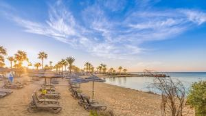 Adams Beach Hotel Deluxe Wing Review Ayia Napa Travel