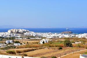Paradisia Villas, Residence  Naxos Chora - big - 34