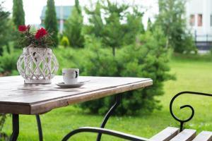 Villa Alessia, Hotels  Skhidnitsa - big - 3