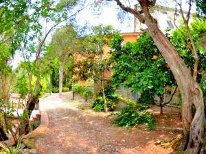 Collina Lagomare - AbcAlberghi.com