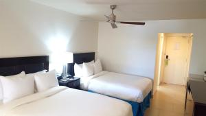 Radisson Grenada Beach Resort (6 of 46)