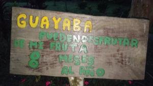 Los Guayabales, Flor