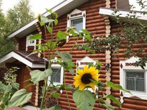 Гостевой дом Терем, Нижний Новгород