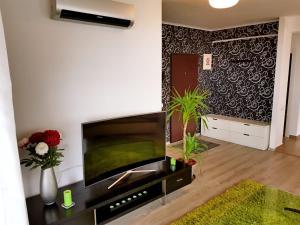 Seasons Apartment, Apartmány  Brašov - big - 37