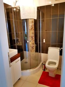 Seasons Apartment, Apartmány  Brašov - big - 40
