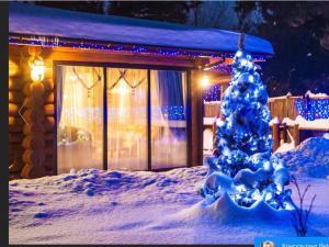 Paradis, Vidiecke domy  Borovlyany - big - 2